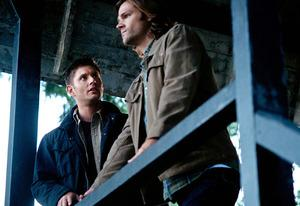 Supernatural | Photo Credits: Ed Araquel/The CW