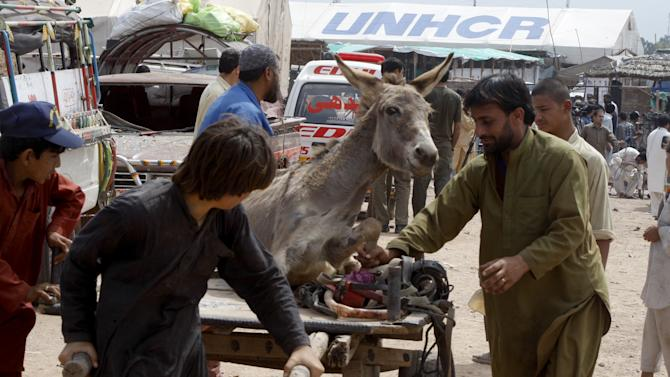 People carry a donkey injured in an explosion at the Jalozai camp on the outskirts of the main northwest city of Peshawar, Pakistan on Thursday, March 21, 2013. A car packed with explosives blew up inside a refugee camp in northwestern Pakistan on Thursday as hundreds of people lined up to get food, killing and wounding dozens, police said. (AP Photo/Mohammad Sajjad)