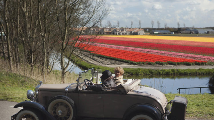 A classic car taking part in a rally passes fields of blossoming tulips near Noordwijk, western Netherlands, Sunday April 22, 2012. Holland is the world's main producer of commercially sold tulip plants, producing as many as 3 billion bulbs annually, about two thirds are for export. (AP Photo/Peter Dejong)