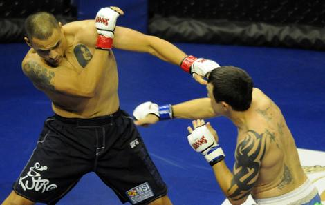 Will New York Legislators End Ban on MMA in 2013?