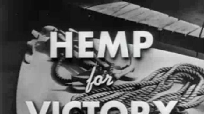 "FILE- This file image made from a film produced by the U.S. Department of Agriculture during World War II shows the title frame of the movie ""Hemp for Victory."" After Japanese troops cut off access to Asian fiber supplies during the war, it released the propaganda film urging farmers to grow hemp and extolling its use in parachutes and rope for the war effort. On the occasion of  ""Legalization Day,"" Thursday, Dec. 6, 2012, when Washington's new law takes effect, AP takes a look back at the cultural and legal status of the ""evil weed"" in American history. (AP Photo/U.S. Department of Agriculture, File)"