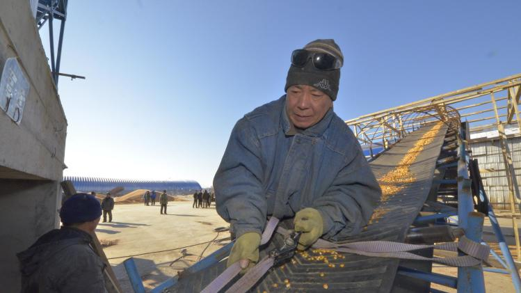 "An employee works on the ""Armada"" farming project run by Dongning Huaxin Group near the far eastern Russian town of Ussuriysk"