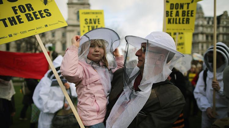 Beekeepers Demonstrate Against Bee Killing Pesticides