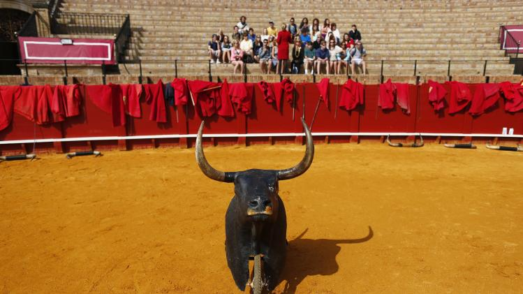 A group of tourists sit during bullfight master class for schoolchildren at Maestranza bullring in Andalusian capital of Seville