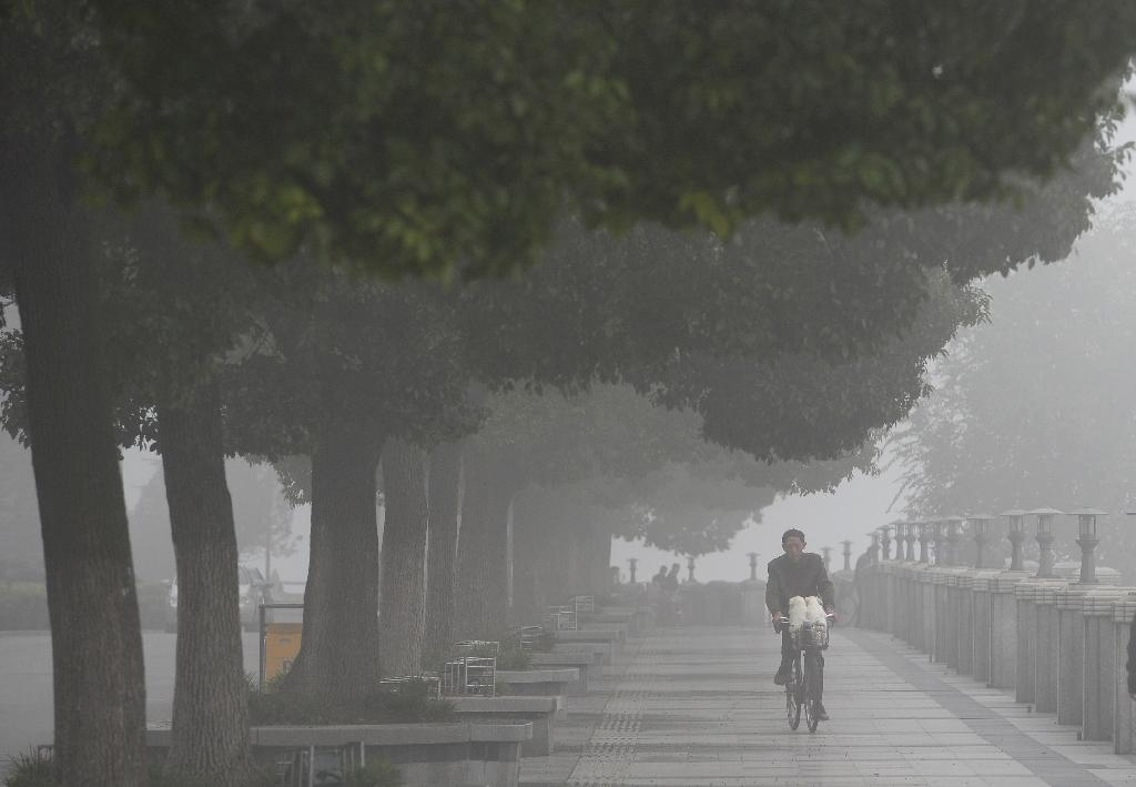 Air pollution levels drop in China: Greenpeace