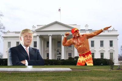 Hulk Hogan has offered to join Donald Trump's presidential ticket and together they'll revolutionize America