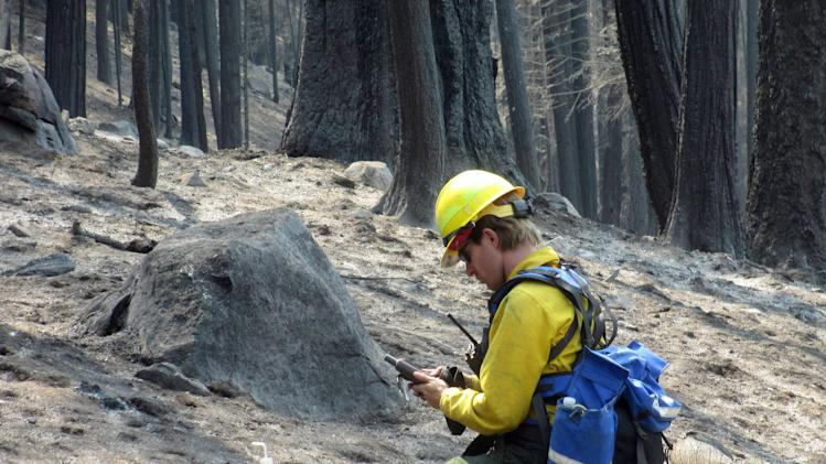 Nearly 40 percent of Rim Fire land a moonscape