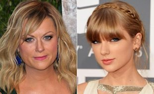 Amy Poehler vs Taylor Swift via NY Daily News