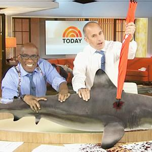 Must-See Celebrity Cameos of 'Sharknado 2'