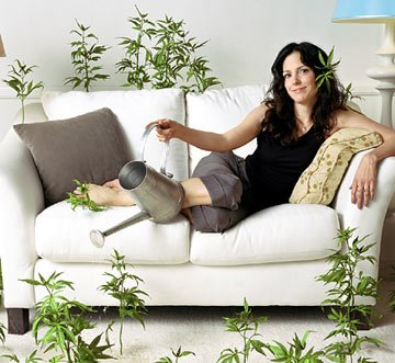 Mary-Louise Parker Showtime's Weeds