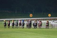 Singapore's horse racing scene set to whinny in 2014