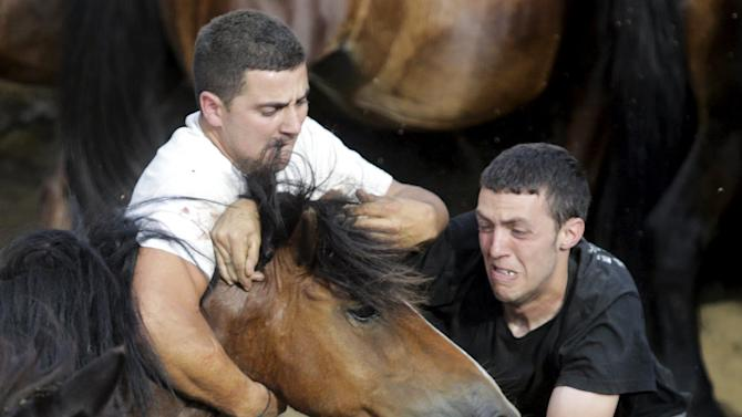 "Revellers try to hold on to a wild horse during the ""Rapa das Bestas"" traditional event in the village of Sabucedo, northwestern Spain"