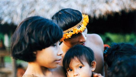 'Most Threatened' Tribe Sees No Relief from Illegal Loggers