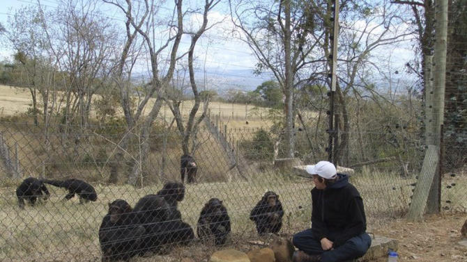This undated photo provided by the Facebook group HelpAndrewOberle shows graduate student Andrew Oberle observing chimps. Doctors are reporting improvement in the condition of Oberle, who was attacked by chimps he was studying in South Africa. (AP Photo/HelpAndrewOberle)