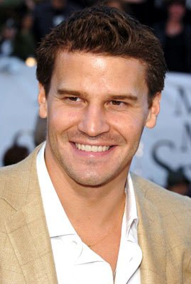 Premiere: David Boreanaz at the Los Angeles premiere of 20th Century Fox's Mr. & Mrs. Smith - 6/7/2005