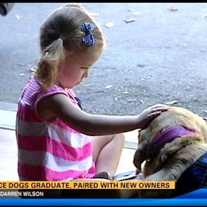 Service dogs graduate, are paired with new owners