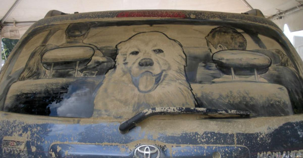 17 Dirty Cars Turned Into Works Of Art