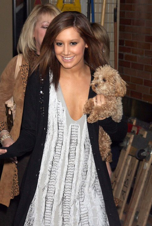 Tisdale Ashley Dog