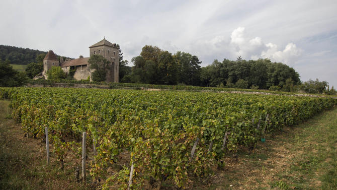 In this Sept. 10, 2012 photo, the Gevrey-Chambertin castle stands in Burgundy, Eastern France. Grape growers in Gevrey-Chambertin say the price Macau casino magnate Louis Ng Chi Sing paid for the chateau is exorbitant and threatens their ability to keep their vineyards in family hands. But in some ways, China has become a savior for some French vineyards, although few in France are willing to say that out loud. China is now a major buyer of wine, picking up the slack as sales to other countries slip. (AP Photo/Laurent Cipriani)
