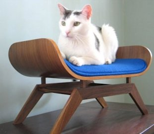 Mid-century Cat Lounger