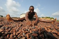 &lt;p&gt;A worker at a cocoa cooperative for wholesale export sorts cocoa beans in Moussadougou, a village on the southern coast of Ivory Coast in 2008. Ivory Coast on Tuesday hosts world players in the cocoa business for a conference on how to face up to the challenges posed by soaring demand.&lt;/p&gt;