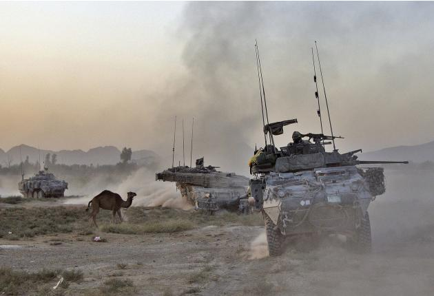 File photo of a convoy of vehicles from 1st Battalion, The Royal Canadian Regiment Battle Group, passing a camel during operation in Kandahar Province