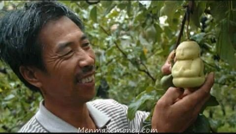 It's taken a Chinese farmer six years to perfect Buddha-shaped pears. (YouTube screengrab)