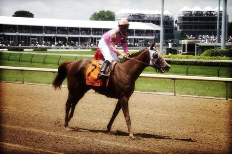 Top Five 2013 Kentucky Derby Favorites