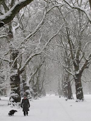 A man walks his dog through a snow covered park in south London, Sunday, Jan. 20, 2013. The big freeze across Britain is here to stay, with more snow expected next week. (AP Photo/Tony Hicks)