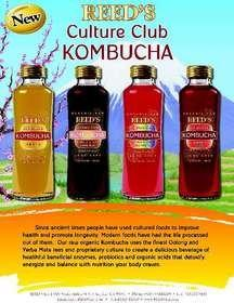 Reed's, Inc. Announces New Entry Into the Fast-Growing Kombucha Category