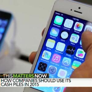 How Should Companies Use Cash Piles in 2015?