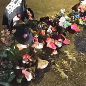 Michael Brown memorial vandalized