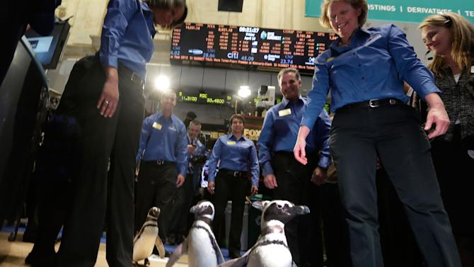 Burst of IPOs follows gains in stock market