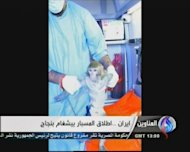 "An Al-Alam TV image from January 28, 2013, shows a man at an unknown location with a monkey said to have been into space. Iran sent a capsule containing a live monkey into space and later retrieved the ""shipment"" intact, the Tehran-based Arab-language Al-Alam channel said, quoting an official statement"