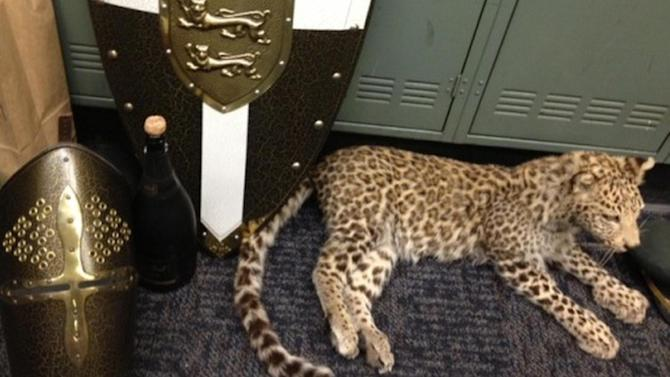 This Dec. 11, 2013 photo provided by the Los Angeles County Sheriff's Department shows recovered stolen items, including medieval armor, jewelry, and a mounted snow leopard on display at news conference at Industry Sheriff's Station in City of Industry, Calif. Authorities have filed criminal charges against 14 teenagers who allegedly broke into a Southern California mansion while the owner was gone and held a party that caused more than $1 million in damage and losses. Los Angeles County prosecutors announced the charges Tuesday, March 18, 2014. Authorities say the party, promoted on social media, sent more than 100 teens to the mansion in La Habra Heights last November. The teens face misdemeanor and felony charges ranging from trespassing to burglary and theft. (AP Photo/Los Angeles County Sheriff's Department)