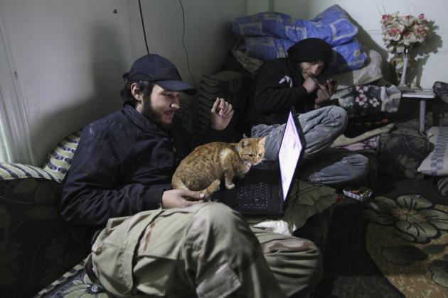 A Free Syrian Army fighter holds a cat as he looks at his computer in Deir al-Zor, eastern Syria