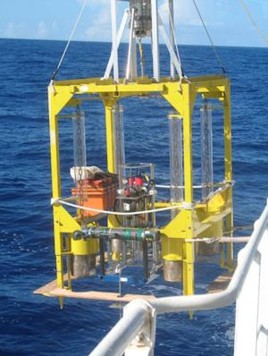 Microbes Thrive in Deepest Spot on Earth