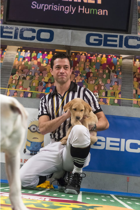 Puppy Bowl IX - Animal Pl …