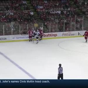 Senators at Red Wings / Game Highlights