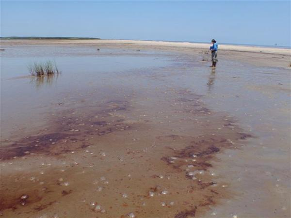 Mission Aims to See if Isaac Churned Up Deepwater Horizon Oil