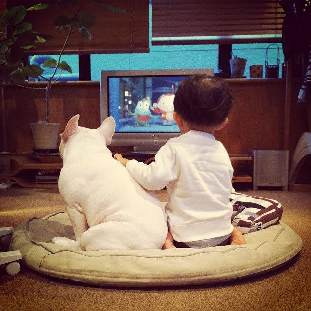 boy-dog-7-jpg_042015 - Lasting friendships start early - Inspiration & Hope