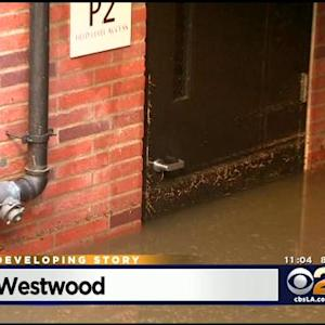 Cleanup Continues At UCLA Following Water Main Break