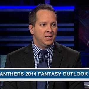 Carolina Panthers 2014 fantasy outlook