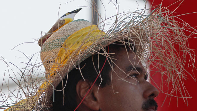"""Venezuela's acting President Nicolas Maduro wears a farm worker's hat with the figure of a bird perched on the hat's crown during a presidential election campaign rally in Catia La Mar, Venezuela, Tuesday, April 9, 2013.  Maduro assured last week during a campaign rally that Venezuela's late President Hugo Chavez appeared to him as a """"very small bird"""" to give him his blessing.  Maduro, Chavez's hand-picked successor , is running for president against opposition candidate Henrique Capriles in the presidential election set for Sunday, April 14. (AP Photo/Ariana Cubillos)"""