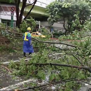 Watch: Typhoon Matmo destruction in Taiwan