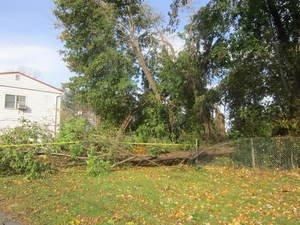Palisades Federal Credit Union Offers Hurricane Sandy Emergency Loans