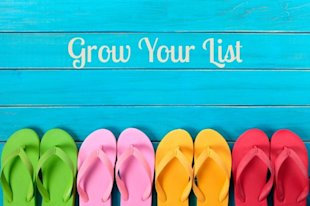 Summer List Building Best Practices image grow your list 2 600x399