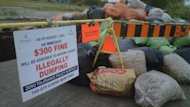 Winnipeggers are still dumping plastic bags of yard waste at former collection sites.