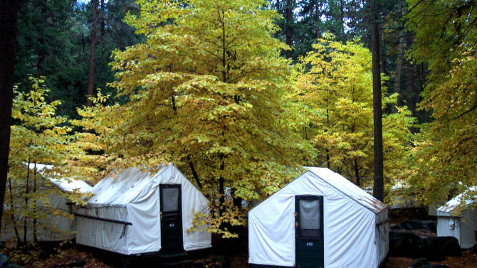 """In this undated photo provided by DNC Parks and Resorts at Yosemite, Inc., are tent cabins in the fall at Yosemite National Park in California. Yosemite officials are expanding their efforts notify visitors to a complex of tent cabins who may have been exposed to a rare but potentially deadly rodent-carried virus. Officials said Wednesday they have notified 2,900 visitors who stayed in the Curry Village """"Signature Cabins"""" since mid-May, up from 1,700 initially notified. (AP Photo/DNC Parks and Resorts at Yosemite, Inc.)"""