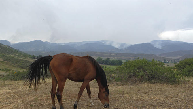 A horse grazes in a pasture as the High Park wildfire burns in the background west of Fort Collins, Colo., on Tuesday, June 12, 2012. The fire burning 15 miles west of Fort Collins was 5 percent contained Tuesday and firefighters were hoping to double that by the evening. (AP Photo/Ed Andrieski)